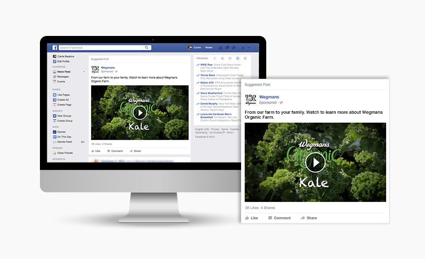 Organic Farm Digital Facebook Advertising